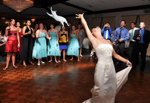 бросить кота на свадьбе