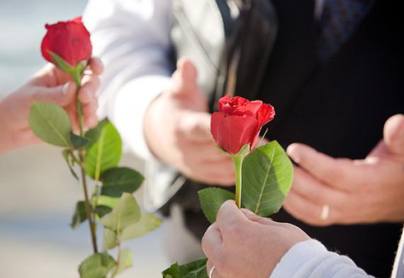 церемония роз