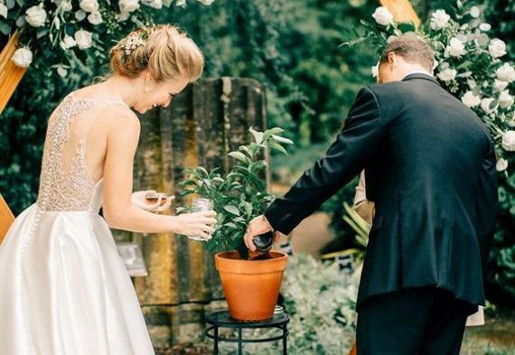 свадебная церемония дерево любви