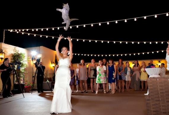 бросить кота вместо свадебного букета