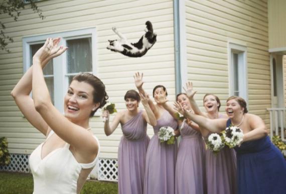 бросить кота подружкам невесты