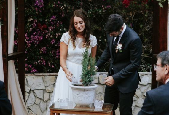 дерево любви на свадьбе